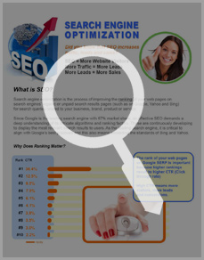 Professional Small Business Search Engine Optimization